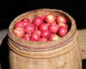 apple_barrel1