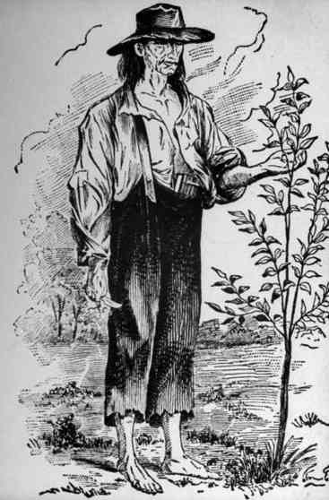 Oldest depiction of John Chapman, drawn from a description probably provided by Rosella Rice.