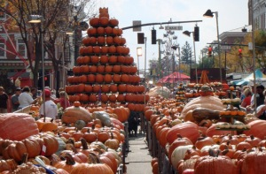 The Circleville, Ohio Pumpkin Show is one of the largest annual pumpkin festivals.