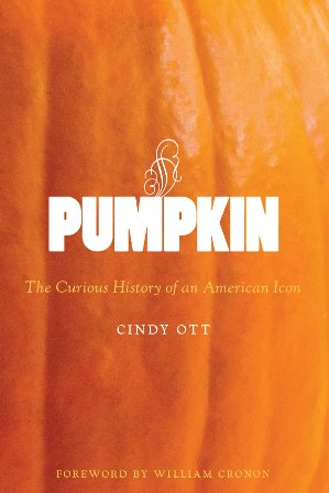 Pumpkin cover