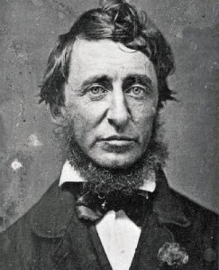 Henry David Thoreau, champion of the wild apple.