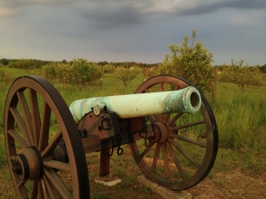 Two cannon sit on the southern edge of the new Piper Orchard at Antietam